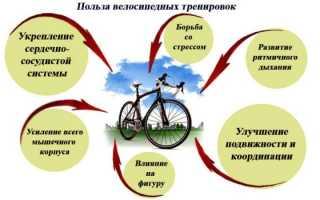 Катание на велосипеде польза для похудения