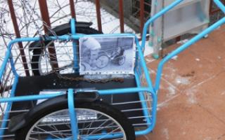 Велосипед с прицепом взрослый